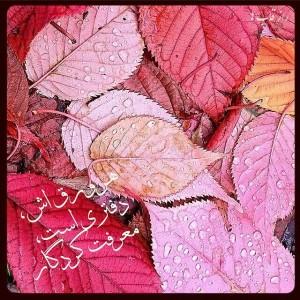 RaazeGhabha Persian Star.org 08 300x300 گلبرگ سرخ عکس نوشته های زیبا شماره دوم